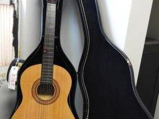 Lot #3767 -Telleno T34CG six string acoustic