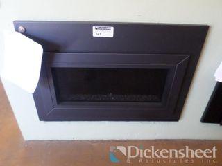 Carina 26 DV Fireplace Insert, Retail $3038.00,