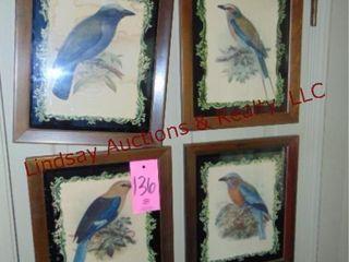 4 framed bird pictures