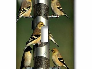 American Finches 1 Gang Toggle light Switch Wall