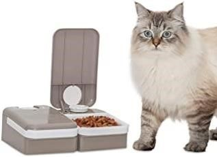 PetSafe Automatic 2 Meal Cat and Dog Feeder   Cat