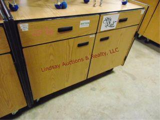 2 door 2 drawer rolling cabinet 48 x 24 x 37