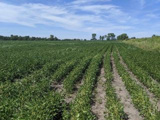 Tract #1 - 140 Acres of farmland, $-per acre