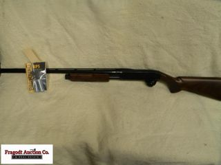 Browning BPS 20 gauge, 3? with changeable chokes.