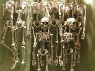 Skeletons  8 total
