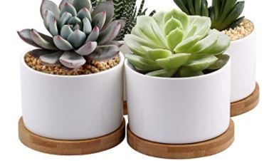 ZOUTOG Succulent Planter  White Mini 3 15 inch Ceramic Flower Planter Pot with Bamboo Tray  Pack of 4   Plants Not Included