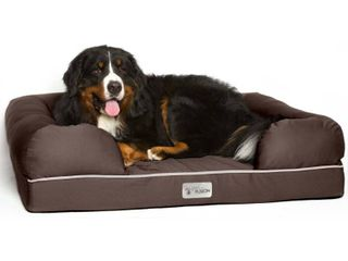 PetFusion Ultimate Dog Bed   lounge  Xl with Solid Memory Foam  Dog not included