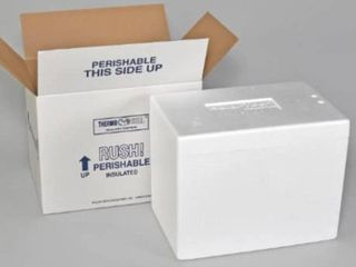 Polar Tech Thermo Carton with 245C Foam Container  Medium  17   l x 10   W x 8 1   4  D