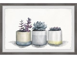 Marmont Hill   Handmade Three Potted Succulents II Framed Print  Retail 109 49