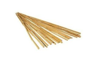 6  25 Bamboo Grow It Plant Stakes