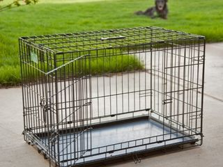 Midwest iCrate Double Door Folding Metal Dog Crate  48 Inches by 30 Inches by 33 Inches