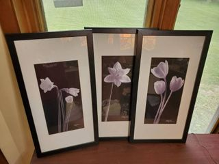 Set of 3 Signed Framed Mated White lilliac Flower Wall Decor