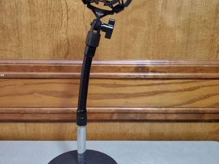 Adjustible Microphone Stand   Iron Base