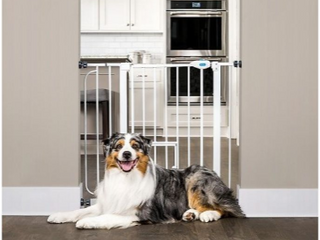 Carlson Pet Products    white door fence
