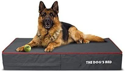 The Dog s Bed  Orthopedic Premium Memory Foam Waterproof Dog Bed Retail   97 99