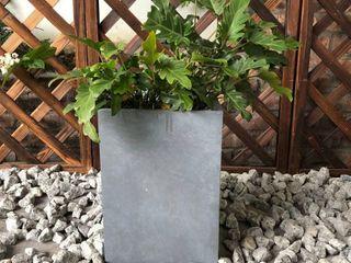 Durx litecrete lightweight Concrete Tall Square Planter Small