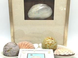 "Ocean Theme Decor: Framed Clam She'll 18.25"" x"