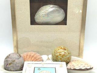 """Ocean Theme Decor: Framed Clam She'll 18.25"""" x"""