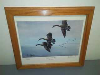 Les C. Kouba Framed Print, Honkers on their way.