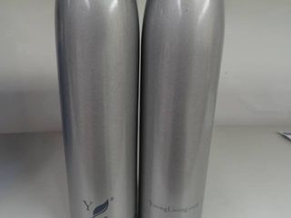 2 stainless steel drink containers
