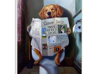 The Stupell Home Decor Collection Dog Reading the Newspaper On Toilet Funny Painting Wall Plaque Art  Proudly Made in USA