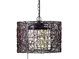 Kenroy Home Adam s 1 light Chandelier