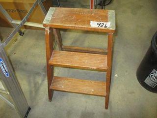 Step ladder 3