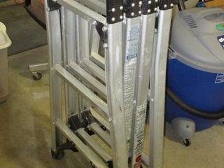 Multi Fold ladder