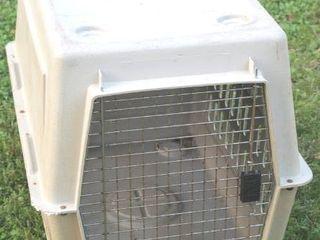 large Pet Kennel 36  lx 24  W x 26  T
