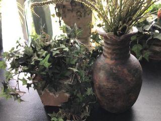 Vase and Basket plants