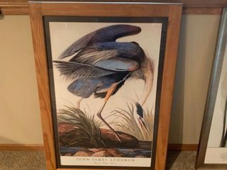Framed Audubon picture