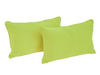 Blazing Needles 20 inch lumbar Throw Pillows  Set of 2