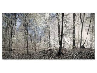 Designart  Dark Morning in Forest Panorama  landscape large Canvas Art Print   Multi color  Retail 103 99
