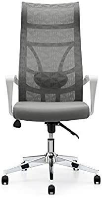 AG 876 nylon home computer chair and high back comfortable adjustable armrest   MIGHT BE MISSING HARDWARE