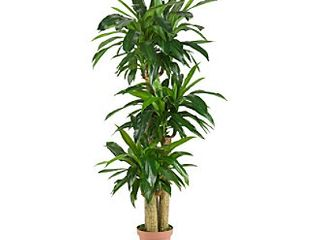 Nearly Natural 6648 4ft  Corn Stalk Dracaena Silk Plant  Real Touch Green  POT IS BROKEN