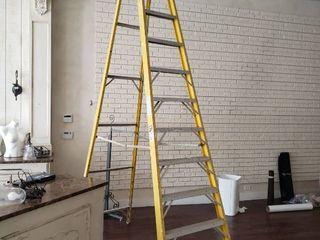 Werner we foot ladder