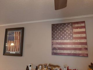 Flag Canvas Picture and Framed Flag Picture