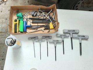 Assorted Hex Keys