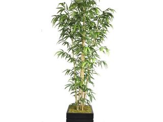 Vintage Home VHX116204 78 Inch Natural Bamboo Tree in 14 Inch Fiber Stone Planter
