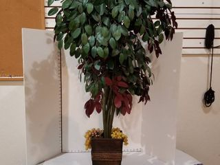 Decorative tree in pot