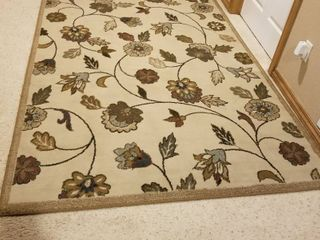 Area rug 5  3  by 7  6