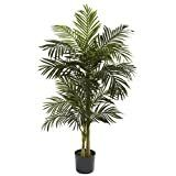 Nearly Natural 5358 Golden Cane Palm Tree  5 Feet  Green 62 5  x 9  x 9  PlANTS NO lONGER POTTED
