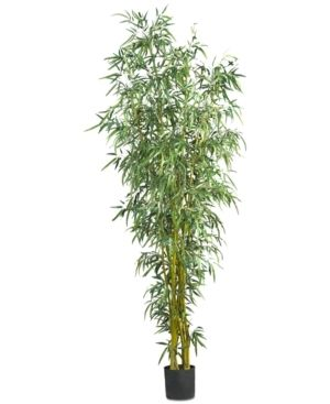 8 inch Fancy Style Bamboo Silk Tree  Retail 207 99