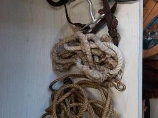 HORSE BIT AND BRIDlE  ROPE AND 2 lEAD ROPES