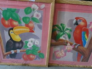 Parrot and Toucan Prints