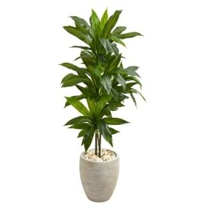 Nearly Natural Dracaena Artificial Plant in Sand Colored Planter  4