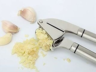 HeylR Stainless Steel 18 8 Garlic Press Oval Handle Crush Garlic Cloves and Ginger with Ease