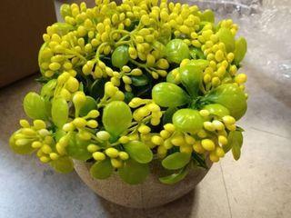 Ezra Decorative Plant