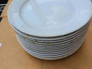 lot of 13 each 12 inch plates