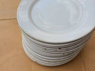 lot of 15 each 10 inch plates